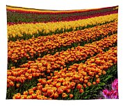 Stunning Rows Of Colorful Tulips Tapestry