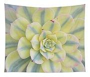Succulent Aeonium Sunburst Tapestry