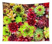 Succulent Garden Tapestry