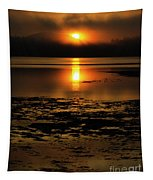 Sunrise Rathtrevor Beach 6 Tapestry