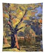 Sunset At Bond Lake Park Tapestry