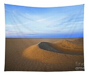 Sunset  Sand Dunes Tapestry