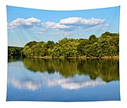 Susquehanna River Tapestry