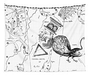The Austral Constellations Of The Altar, The Southern Triangle And The Peacock Tapestry