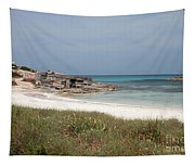 The Boathouse And The Beach Tapestry