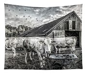 The Cows Came Home Black And White Tapestry