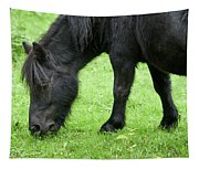 The Grass Is Greener Here. The Black Pony Tapestry