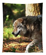 The Gray Wolf Tapestry