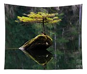 The Little Tree On Fairy Lake 5 Tapestry