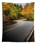 The Mountain Road Tapestry