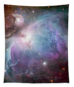 The Orion Nebula Tapestry