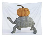 The Tortoise And The Pumpkin Tapestry