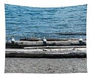 Three Gulls On A Log Tapestry