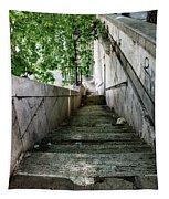 Tiber Steps Tapestry