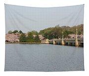 Tidal Basin Bridge Tapestry
