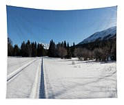 Tire Tracks In Snow In An Isolated Area Of The Kenai Peninsula Tapestry