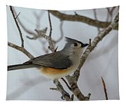 Titmouse Winter Morning Cutie  Tapestry