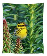 Townsend's Warbler  Tapestry by Christy Pooschke