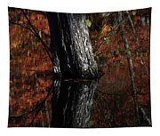 Tree Reflects In The Pond Tapestry