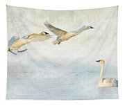 Trumpeter Swans - Don't Land On Me Tapestry