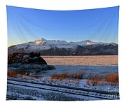 Turnagain Arm And Kenai Mountains Alaska Tapestry