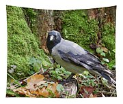 Under The Oak Tree. Hooded Crow Tapestry