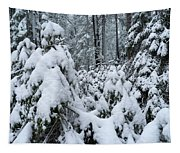 Under The Snow Tapestry