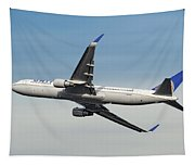 United Airlines Boeing 767-322 Tapestry