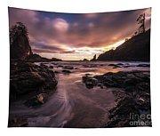 Washington Coast Dusk Tide Motion Tapestry