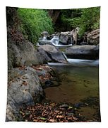 Water Stream On The River With Small Waterfalls Tapestry