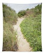 Wellfleet Sand Dunes Tapestry