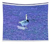 Where's Mine - The Blue Goose Tapestry