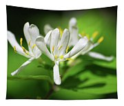 White Honeysuckle Flowers Tapestry