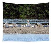 White Pelican Rest Tapestry