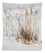 Whitehorse Winter Landscape Tapestry