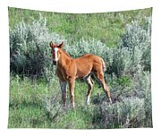 Wild Horse Foal Tapestry