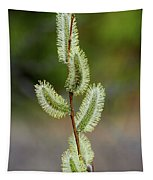Willow In The Bloom Tapestry
