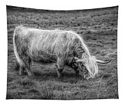 Windblown In Scotland Black And White Tapestry