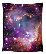 Wing Of The Small Magellanic Cloud Tapestry