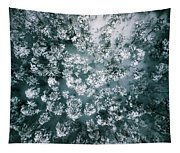 Winter Forest - Aerial Photography Tapestry