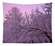 Winter In New England Tapestry
