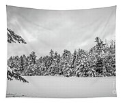 Winter Storm Anderson Pond Tapestry
