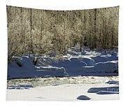 Winter Stream Near Hope On The Kenai Peninsula Alaska Tapestry