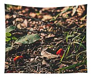 Witch's Hat Mushrooms Tapestry