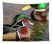 Wood Duck Head Shot Tapestry