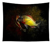 Yellow Blunthead Cichlid Dance Tapestry