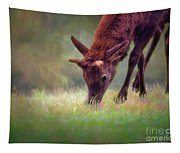 Young Elk Grazing Tapestry