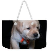 4 Week Old Lab Puppy Weekender Tote Bag