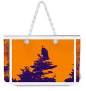 Eagle Scout At Sunset Weekender Tote Bag