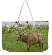 Elk At Pond Edge Weekender Tote Bag